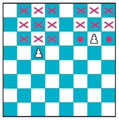 image 1342